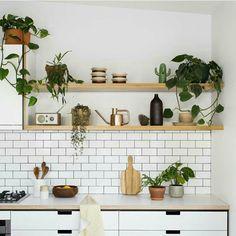 Kitchen Inspi 1