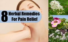 8 Best Herbal Remedies For Pain Relief
