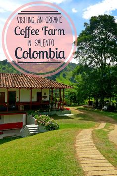 We visited an organic coffee farm in Salento, Colombia, in the heart of the…