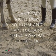 I can't talk right now, my horse and I are too busy being awesome together.