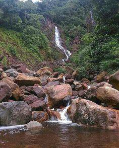 Parque Nacional Chorro El Indio. Edo. Táchira