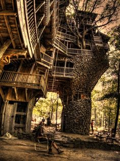 wow, the ultimate tree house