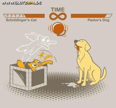Schrödingers Katze vs. Pavlovs Hund