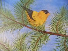 Golden Finch in the Pines by Darleen Hyde in the FASO Daily Art Show