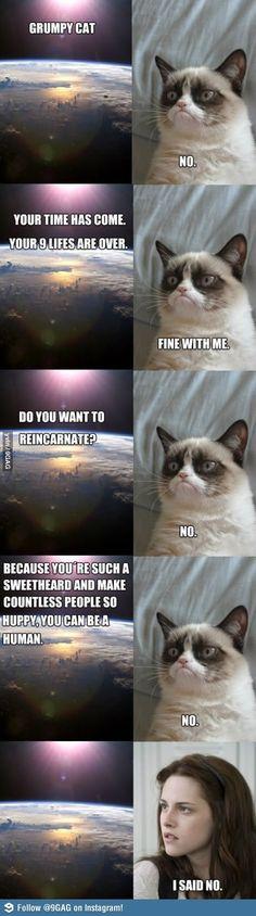 Bahahahahaha grumpy cat <3