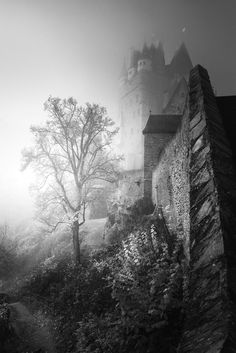 The foggy tree - This tree draws my attention while my visit at Castle Eltz. The position of the tree, the castle and the fog behind would be a perfect location for a Dracula-like film.