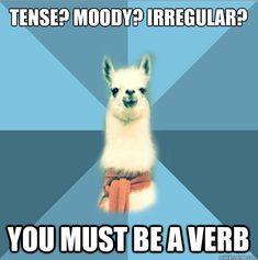 Linguist Llama Tense? Mood? Irregular? You must be a VERB
