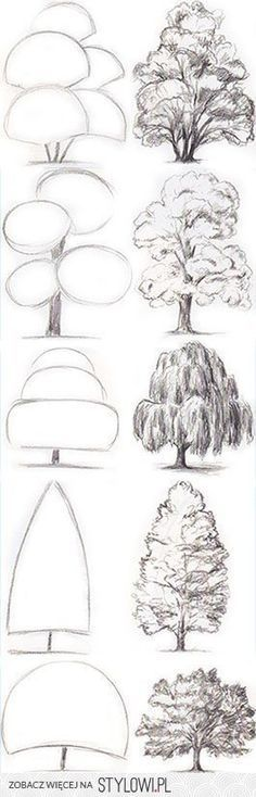 drawing trees in basic shapes