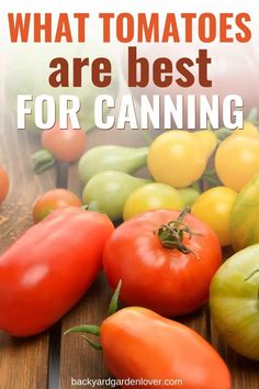 If you wish you could savor the summer flavors all year long, now you can! Here are the best tomatoes for canning. Plant a couple of each in next year's garden for a nice harvest. Then you'll be ready to make tomato juice, tomato sauce, salsa, and any other tomato canning recipes. #tomatoes #tomatoharvest #howtopreservetomatoes #homestading #canning Canning Vegetables, Home Grown Vegetables, Fresh Vegetables, Growing Vegetables, Preserving Tomatoes, Tips For Growing Tomatoes, How To Can Tomatoes, Tomato Canning, Canning Tomatoes