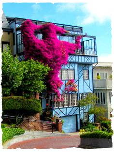 Vibrant! This home is on the curvy, famous street: Lombard.  Take a video tour: http://amiechilson.com/2013/02/take-a-tour-down-lombard-street-in-san-francisco-with-amie-chilson/