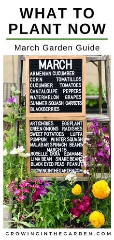 March Garden Guide - Garden inspiration, a March garden checklist, and a list of which vegetables, herbs, and flowers to - Summer Plants, Fall Plants, Citrus Trees, Fruit Trees, Autumn Garden, Spring Garden, Garden Fun, Fruit Garden, Garden Plants
