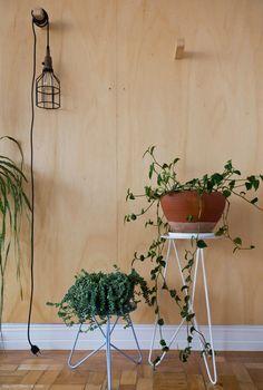 02-decoracao-plantas-em-apartamento-suporte-selvvva-madeira