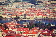 A sea of red roofs! Take in this view from Petřín hill and enjoy the trees in full bloom.