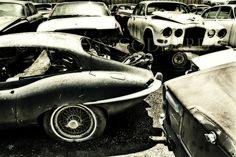 Jaguar Heaven junkyard in stockton California USA www.jaguarsanjuantx.com