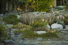 folly bowl, backyard amphitheater in altadena, ca via a growing obsession