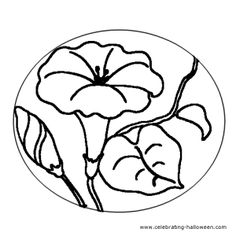 Lily Flower – Free Pumpkin Carving Pattern