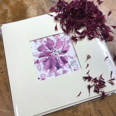 Hand painted Confetti Flower Field Greetings Cards by artist Hayley Reynolds. Designed and made exclusively for The Real Flower Petal Confetti Company! Real Flowers, Colorful Flowers, Beautiful Flowers, Popular Wedding Colors, Pen Design, Delphinium, Purple Haze, Flower Petals, Confetti