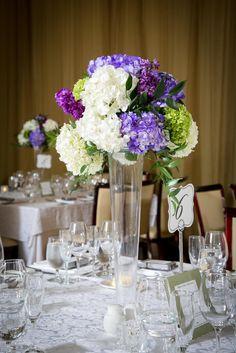 Tall White and Purple Hydrangeas