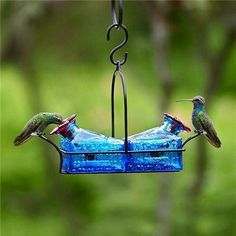 Most adorable Hummingbird Feeder ever ...love it!