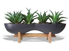 This curvy, high styled planter offers an unparalleled presentation, shape and combination of materials. The planter is made from the highest quality resin, with an attractive finish and elegant teak wood stand to hold the planter. Modern Planters, Wood Planters, Indoor Planters, Indoor Outdoor, Planter Pots, Planter Ideas, Modern Plant Stand, Diy Plant Stand, Planters For Sale