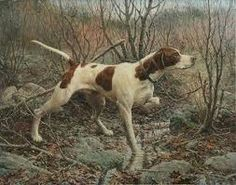 On Point by William Harnden Foster 1937 Grouse Hunting, Quail Hunting, Hunting Dogs, Wildlife Paintings, Wildlife Art, Safari, Pointer Dog, Trail Riding, Dog Art