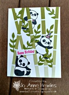 Party Pandas, Color Theory Dsp Stack, Bouquet Bunch Framelits   All From  Stampinu0027 Up!