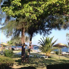 Our office for a couple of days  #molacoton #molamonton #turkey #turquia #turkishtowel #toallaturca #fouta #pareo #travel #beach #playa #pestamal #pestemal #peshtemal #peshtamal #verano #summer #sustainablefashion #modaetica #modasostenible #nofilter