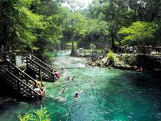 Lafayette Blue Springs State Park - Florida, USA #lafayette #blue springs #park #florida