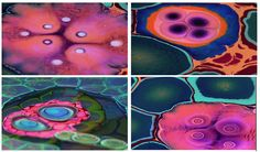 Meet Bruce Riley, a unique abstract resin artist from Chicago, Illinois. Bruce Riley is the newest ArtResin Feature Artist. His techniques and style is unrivalled. Riley focuses on process rather than product; he is interested in investigating and learning new avenues in his creativity over repeating what he already knows. Bruce Riley is awesome—check out this video.