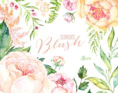 Blush. 33 Watercolor Floral Elements peach cream pink