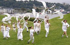 Arctic Tern Giant Puppets, 2003