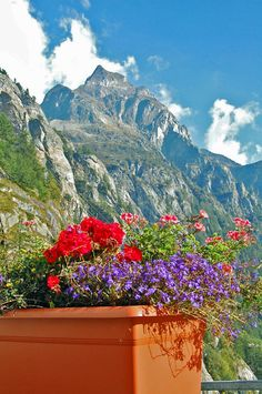 near Cascata del Toce, Piedmont, Italy, by Margo Millure #jetsettercurator