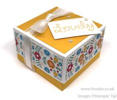 Stampin' Up! Demonstrator Pootles - Lidded Box for 3x3 Cards using Festive Birthday DSP