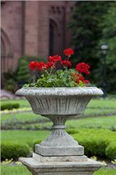 Buy Smithsonian Georgetown Urn online with free shipping from thegardengates.com