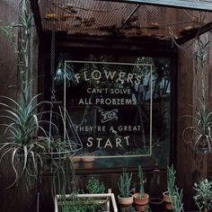 Plants and flowers can't solve all your problems, but they're a great start. Indoor Plants and House plants in a plant shop. Indoor and outdoor gardens.