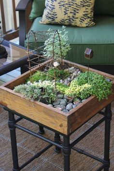 plants, stones, bucket, tree house, water can, small pot, large wooden glass, metal,etc container