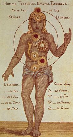 Illustration From Theosophica Practica, Showing The Seven Chakras, 19th Century Drawing by Indian School
