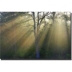 Patty Tuggle 'New Day' Gallery-wrapped Canvas Art