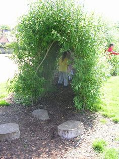 Willow Structures in School Grounds | Creative STAR Learning | I'm a teacher, get me OUTSIDE here! Super advice by professional willow worker Clare Revera from Out to Learn Willow