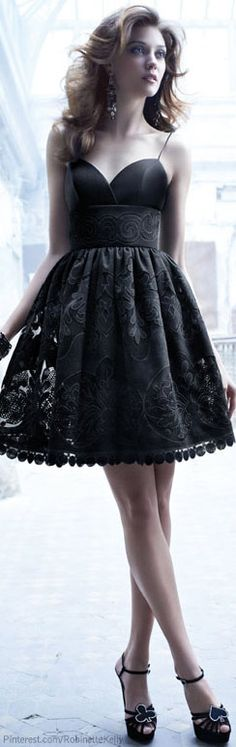 Black lace doesn't have to be just for the bedroom. This dress knocks it out of the park!