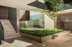 The garden of your dreams: Como decorar un patio interno Modern Interior, Interior Architecture, Garden Architecture, Sustainable Architecture, Interior Design, Atrium Design, Villa Design, Design Design, Luxury Boat