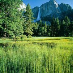 Yosemite Fall Yosemite National Park