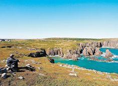 Tout à l'est du Canada, l'île de Terre-Neuve se fait attirante et légèrement mystérieuse. Nature Sauvage, Canada, Saint Jean, Prince, Mountains, Water, Travel, Outdoor, American Black Bear
