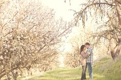 Page not found - Lindsey Gomes Photography Rustic Photography, Family Photos, Couple Photos, Almond Blossom, Engagement Shoots, Blossoms, Dream Wedding, Portrait, Spring
