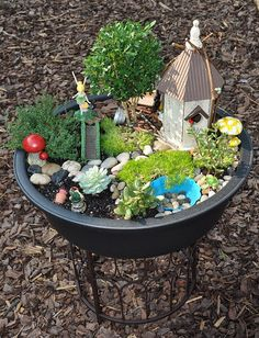 Fairy Garden- Emma & my mom made one in an old wheelbarrow last summer & she lived it. Would check it all the time for proof of fairies.