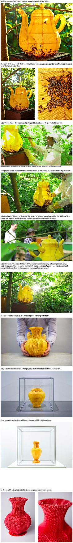 Designer Tomáš Gabzdil Libertíny of Studio Libertiny collaborated with an army of bees to complete Thousand Years, his latest experimental beeswax sculpture. Commissioned by the French fine silver manufacturer Christofle, the large teapot-shaped vessel was created with the help of Dutch beekeeper Johan Beckers and his group of 60,000 bees.