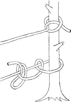 A camp staple for securing anything that needs to stay in one place, the half hitch along with the bowline, power cinch, and prusik loop will most likely be regulars…
