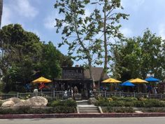 6. Madison Square Garden and Cafe -- Laguna Beach