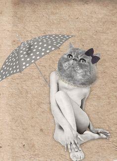 Cat, Illustration by EM Miljeteig Ems, Illustrations, Animals, Animales, Animaux, Illustration, Animal Memes, Animal, Animais