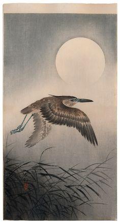 Heron and Full Moon by Ohara Koson Hanga gallery. Japanese Bird, Japanese Prints, Turning Japanese, Japanese Style, Illustrations, Illustration Art, Ohara Koson, Japanese Painting, Japan Art